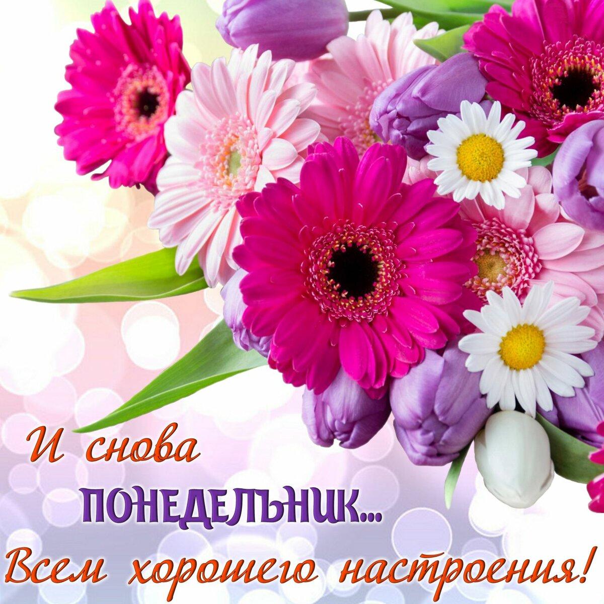 Красивые картинки с цветами с пожеланиями хорошего, представители