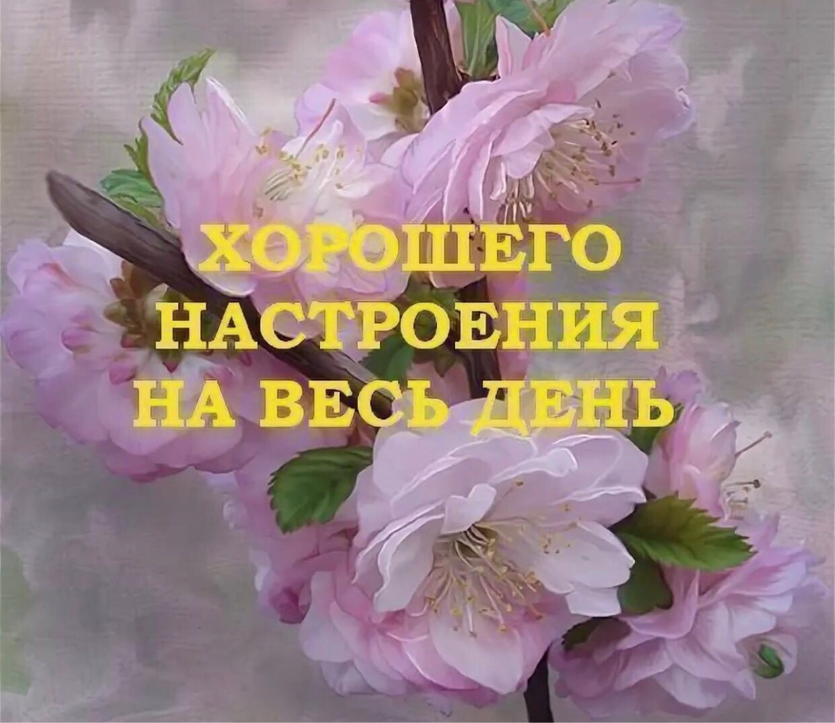 Доброго вам дня и хорошего настроения картинки православные