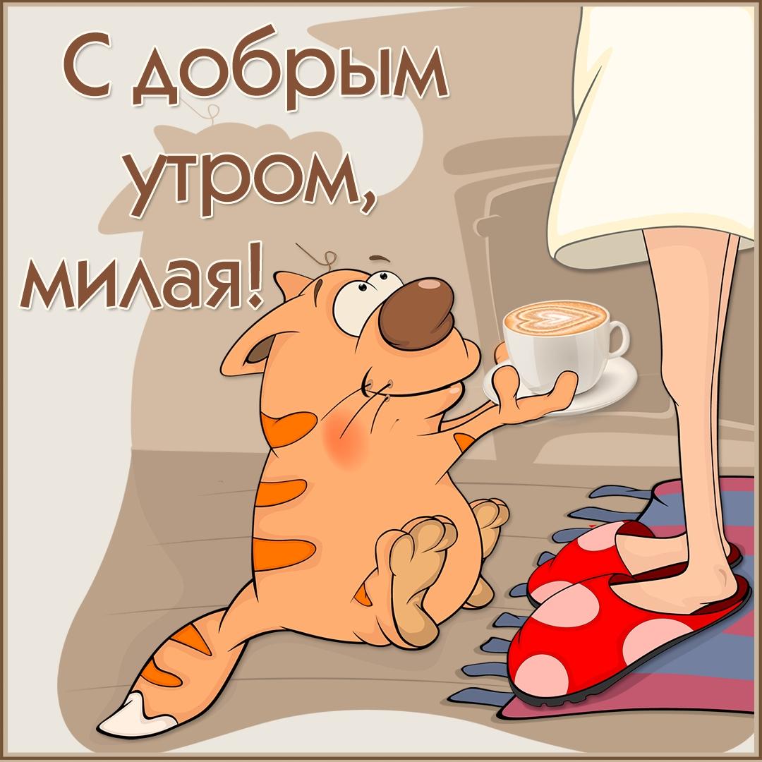 Доброе утро прикольные картинки на русском
