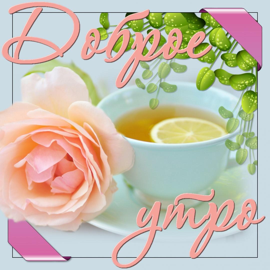 Дню чая, самого доброго утра открытки с красивыми надписями