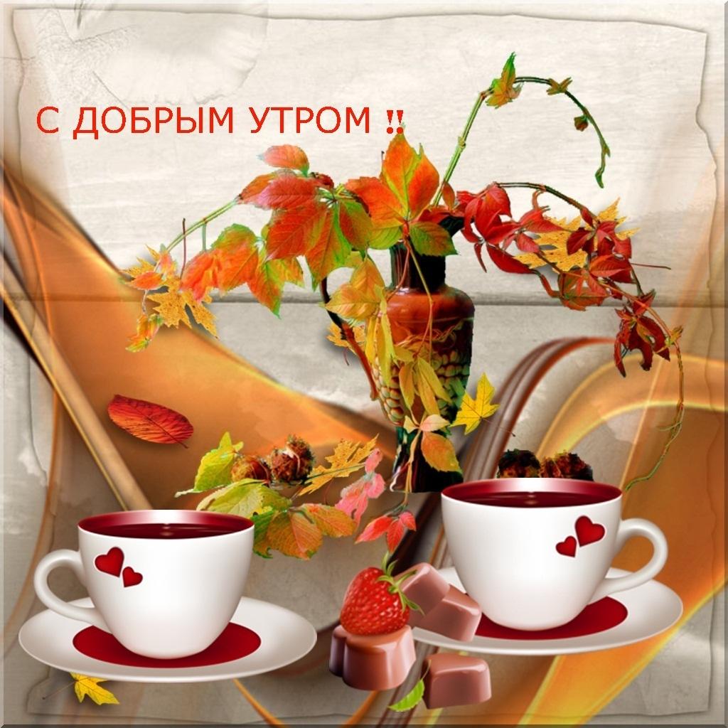 Открытки с добрым утром красивые друзьям, цветы