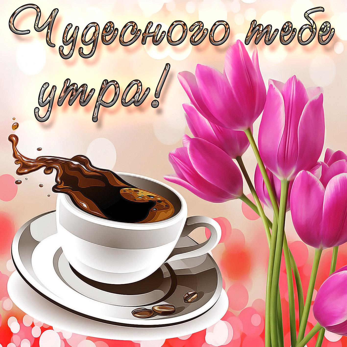 Цветы, доброе утро картинки поздравления с добрым утром чтобы пе
