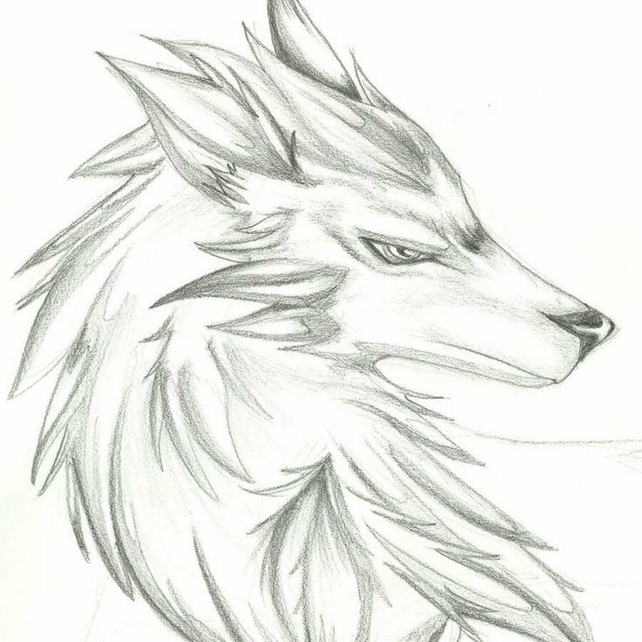 Рисунки для срисовки легкие и красивые картинки животных карандашом, вырезать