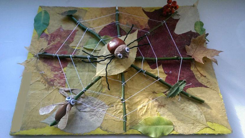 Поделки из природного материала: 125 фото как своими руками сделать красивые поделки